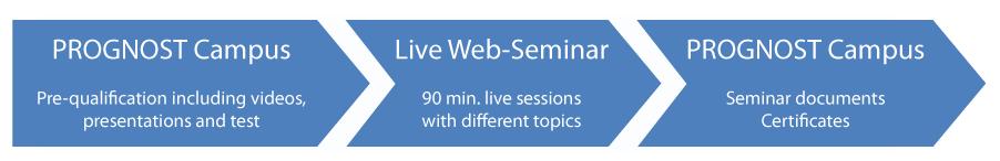 Exemplary web seminar process